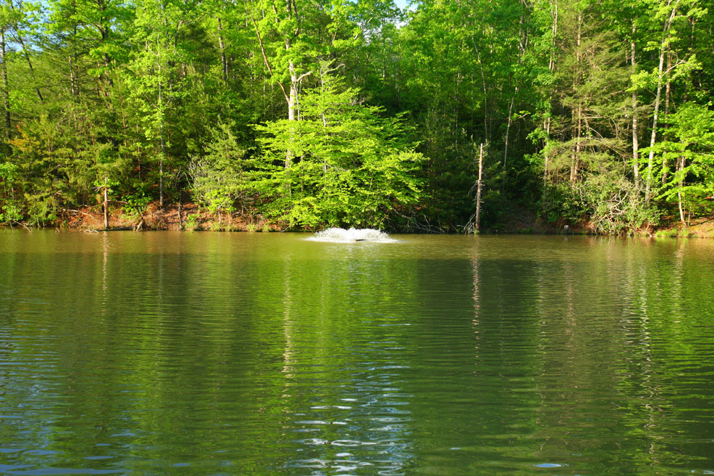 Our private fishing lake caney creek cabin rental for Private fishing lakes